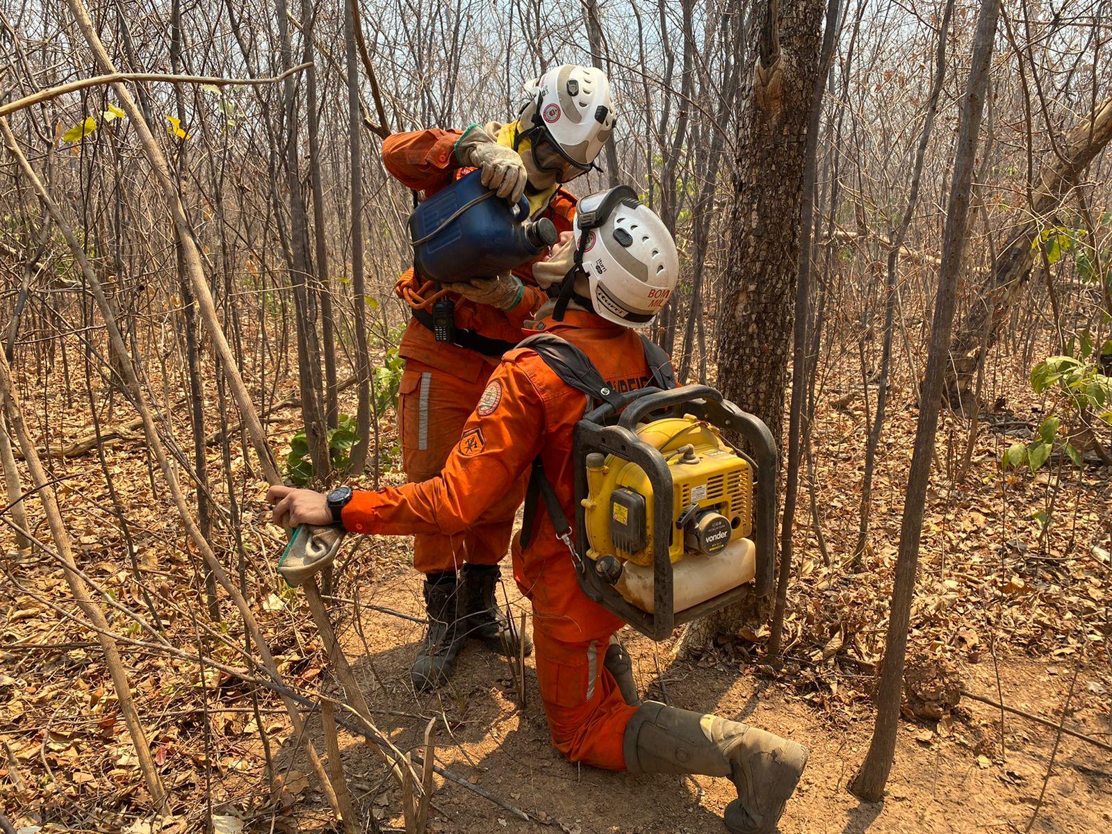 Bombeiros realizam operação de combate a incêndios florestais na Bahia